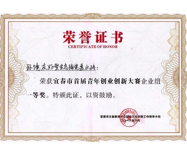 宜春市首届青年创业创新大赛企业组一等奖